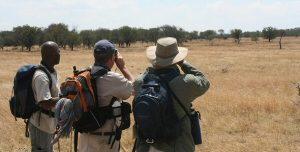 Tanzania Walking Safaris